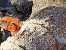 Sawing timber Royalty Free Stock Image