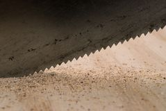 Sawing Wood. Closeup of handsaw cutting wood stock photography