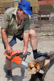 Sawing wood Royalty Free Stock Photo