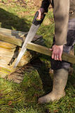 Sawing Wood Royalty Free Stock Photos