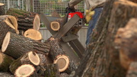 Sawing Wood With A Chainsaw 01 stock footage