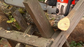 Sawing Wood With A Chainsaw 06 stock video