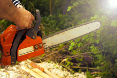 Sawing wood with a chainsaw. Carpenter working Royalty Free Stock Images