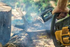 Sawing wood with a chainsaw. The summer production of wood royalty free stock photo