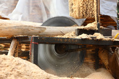 Sawing wood. In the factory Royalty Free Stock Images