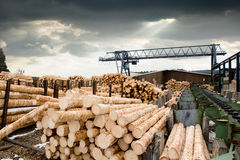 Sawmill Stock Photos