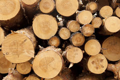 Sawmill Royalty Free Stock Photos