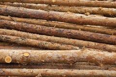 Sawmill Stock Photography