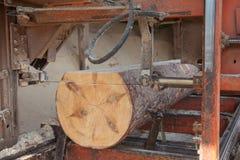 sawmill Arkivfoto