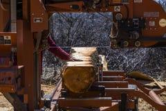 Sawmill Cutting Log