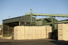 Sawmill factory wood chips hopper and machine cutter. Uk stock photo