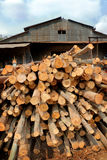 Sawmill.logs stacked in a pile. Stock Photos