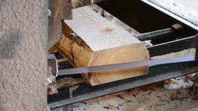 Sawmill. Process of machining logs in sawmill machine saws the tree trunk. Sawmill. Process of machining logs in equipment sawmill machine saw saws the tree stock video footage