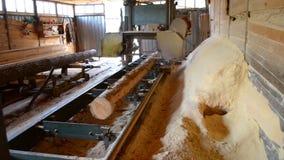 Sawmill. Process of machining logs in sawmill machine saws the tree trunk. Sawmill. Process of machining logs in equipment sawmill machine saw saws the tree stock footage