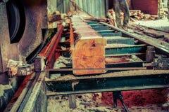 sawmill Processen av att bearbeta med maskin loggar in sågverkmaskinsågar ten arkivbilder