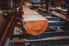sawmill Processen av att bearbeta med maskin loggar in sågverkmaskinsågar ten fotografering för bildbyråer