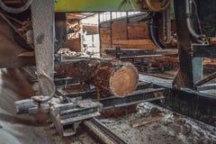 sawmill Processen av att bearbeta med maskin loggar in sågverkmaskinsågar ten arkivbild