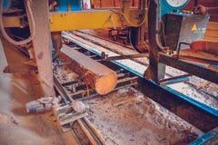 sawmill Processen av att bearbeta med maskin loggar in sågverkmaskinsågar ten royaltyfri fotografi