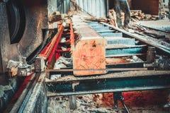 sawmill Processen av att bearbeta med maskin loggar in sågverkmaskinsågar trädstammen royaltyfri fotografi