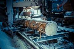 sawmill Processen av att bearbeta med maskin loggar in sågverkmaskinsågar trädstammen arkivbild