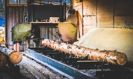 sawmill Processen av att bearbeta med maskin loggar in s?gverkmaskins?gar tr?dstammen arkivfoton