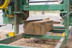 sawmill Processen av att bearbeta med maskin loggar in utrustningsågverkmaskinen såg att sågar trädstammen på plankan stiger ombo royaltyfri fotografi