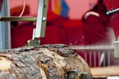 sawmill Processen av att bearbeta med maskin loggar in utrustnings?gverkmaskinen s?g att s?gar tr?dstammen p? plankan stiger ombo royaltyfri foto