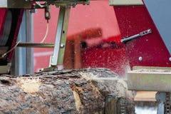 sawmill Processen av att bearbeta med maskin loggar in utrustnings?gverkmaskinen s?g att s?gar tr?dstammen p? plankan stiger ombo royaltyfria bilder