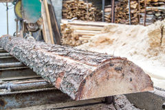 Sawmill production cutting wood Stock Photos