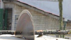 Sawmill saw cuts stock video