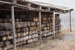 Sawmill, Wood Processing, Timber Drying, Timber Harvesting Stock Image