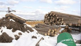 Sawmill yard stored piles of timber tree materials covered in snow. On cloudy winter day stock footage