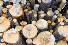 Sawn birch logs at the sawmill Stock Photos