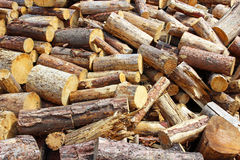 Sawn firewood. Many sawn firewood harvested for the winter Royalty Free Stock Photo