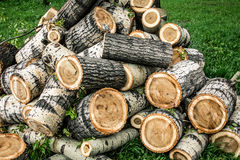 Sawn logs. Royalty Free Stock Photo