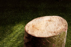 Sawn off wooden tree stump in a garden Stock Photography