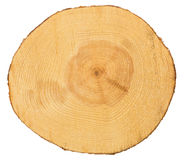 Sawn pine wood stock image
