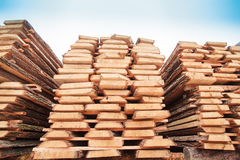 Sawn timber wood Royalty Free Stock Photography