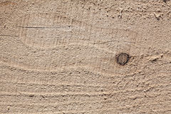 Sawn wood in bright sunlight on it lying chips and dust Stock Photography