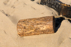 Sawn wood log in the sand on a beach next to burnt remains of campfire Royalty Free Stock Photo