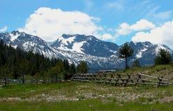 Sawtoothängar - Idaho Arkivfoto