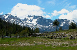 Sawtooth Meadows - Idaho Stock Photo