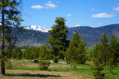 Sawtooth Mountains - Idaho. A picnic and camping area in Idaho`s Sawtooth Mountains, near Stanley Royalty Free Stock Photography