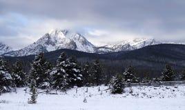 Sawtooth pasma górskiego zimy krajobrazu Idaho Głęboki obywatel Rec Zdjęcia Stock