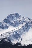 Sawtoothberg med snö Royaltyfri Foto