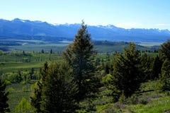Sawtooths vom Galena-Gipfel Lizenzfreie Stockfotografie