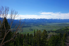 Sawtooths vom Galena-Gipfel Lizenzfreie Stockbilder