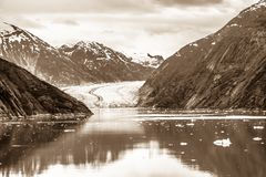 Sawyer Glacier at Tracy Arm Fjord in alaska panhandle stock image