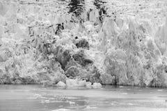 Sawyer Glacier at Tracy Arm Fjord in alaska panhandle stock photos