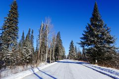 Sax-Zim Bog in the Winter Snow. A Snowy road passes through the Sax-Zim Bog. The cold snow clings to the trees while the icy, blue sky stands in stark contrast royalty free stock photo